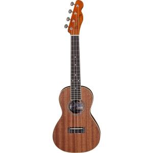 Fender Mino'Aka - Concert