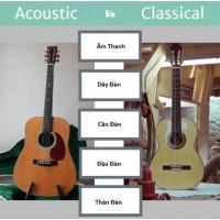 So sánh đàn guitar classic và acoustic