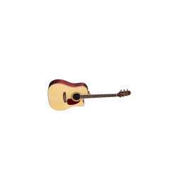 Takamine EF360SC