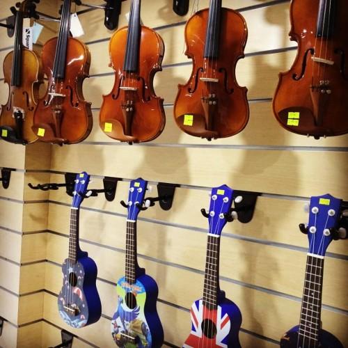 Thông tin thị trường đàn violin tại Việt Nam