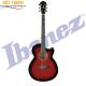 Guitar IBANEZ  AEG5EJP-TRS