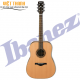 Guitar IBANEZ  AW250-LG