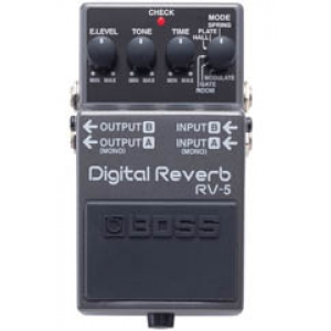 Roland Digital Reverb RV5