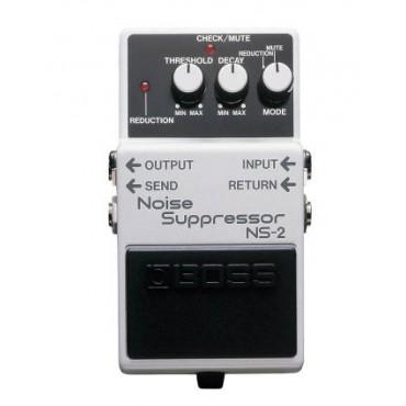 Roland NS-2