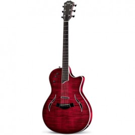Taylor T5-S1